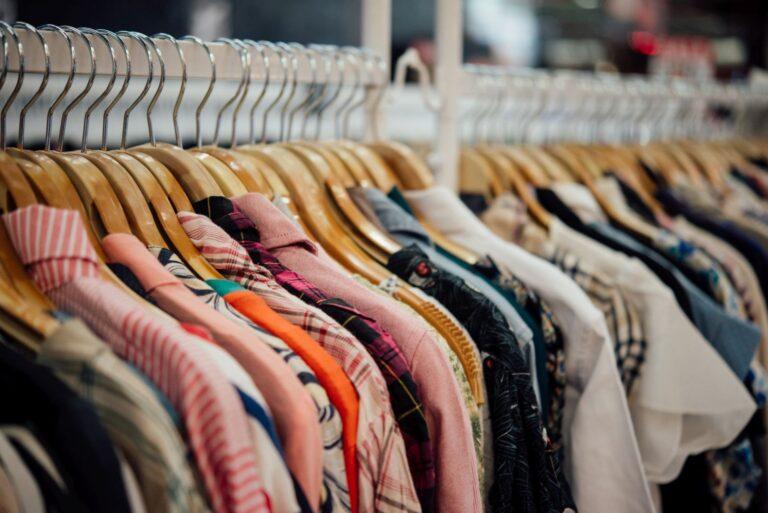 Jak pozbyć się moli ubraniowych